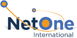 NetOne International logo